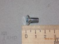 Винт М6х10 крепления храпового диска Вихрь